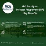 #Irish_Immigrant_Investor_Program (#IIP)